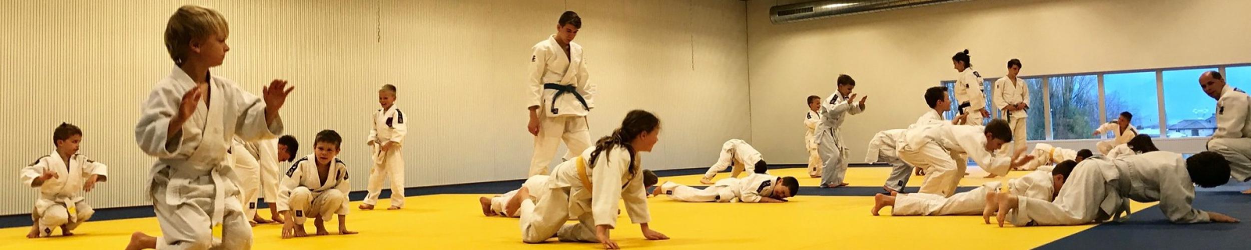 UPDATE: Start trainingen (onder voorbehoud)